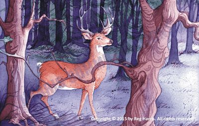 Hero's Journey - Fallow Deer