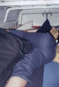 Humping pillow gif - Gillianmelia.Com