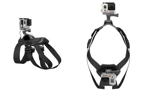 gopro-dog-harness
