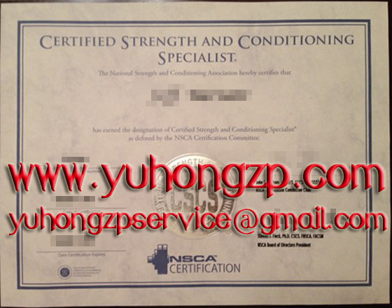 Certified Strength And Conditioning Specialist Sample Resume