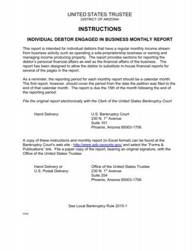 individual debtor engaged in business monthly report - business monthly report