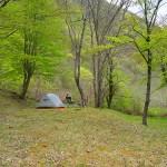 【 岩手 】龍泉洞青少年旅行村でソロキャンプ