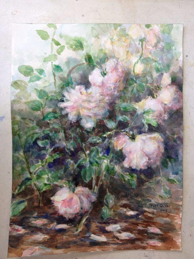 Roses, The Weeden House Museum and Garden, Roses, Garden, watercolor