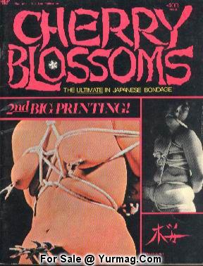 detective magazine bondage models