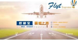 FLYT Express kargo takibi