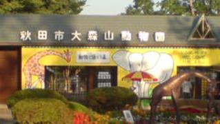akita-omoriyama