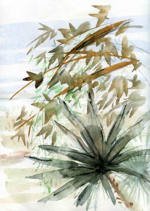 Vegetation-1800