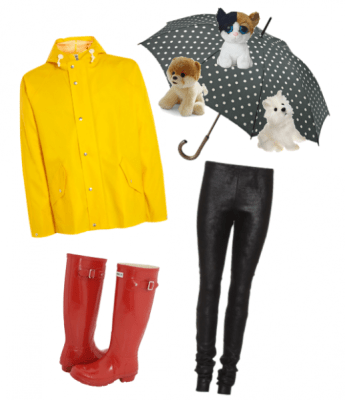 raining-cats-and-dogs-4