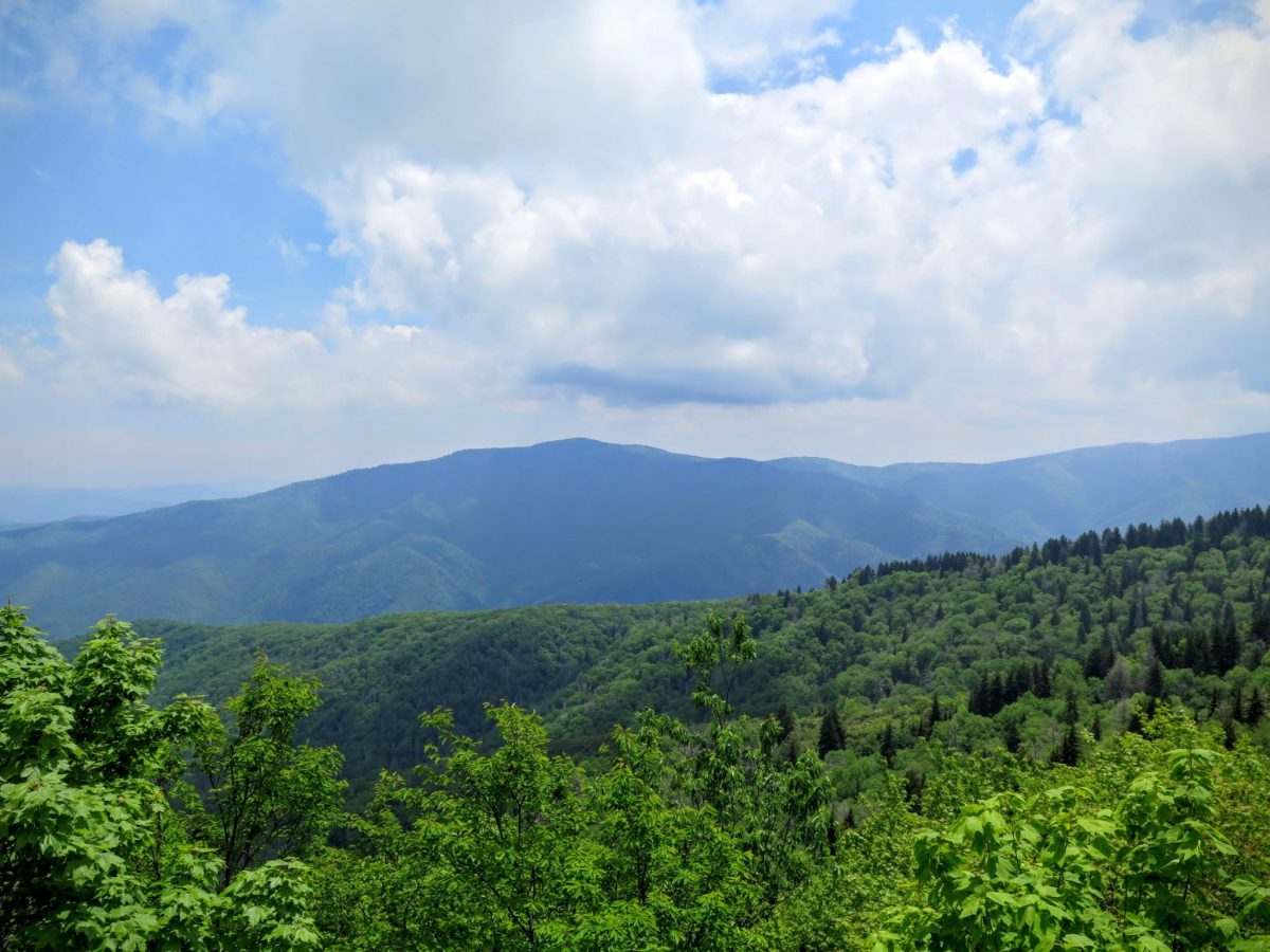 Mt. Cammerer and Big Creek - Great Smoky Mountains National Park, NC