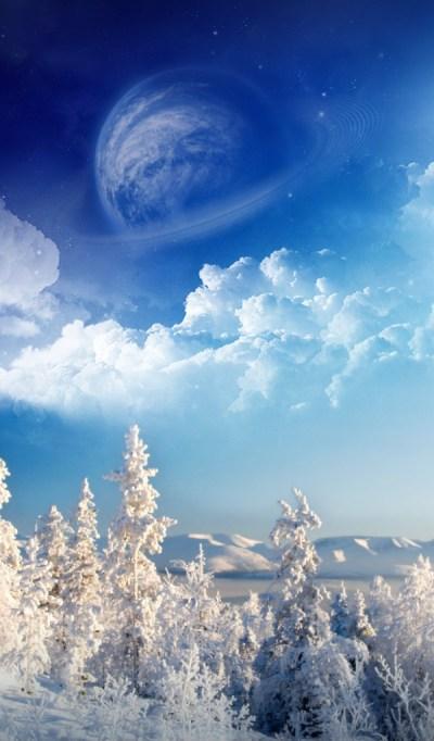 Winter wonderland Desktop wallpapers 600x1024