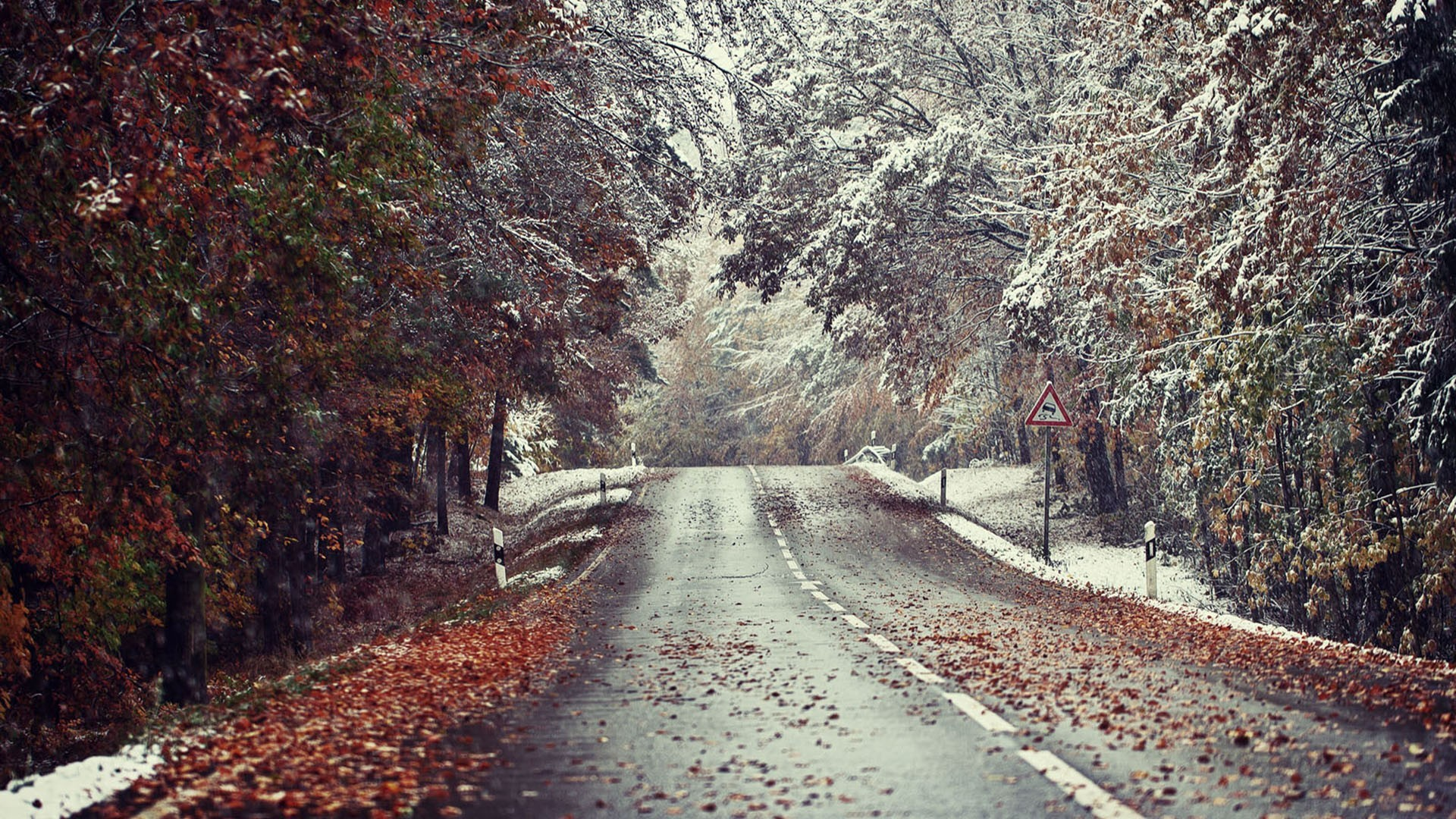 Cozy Fall Hd Wallpaper Meeting Of Winter And Autumn By The Roadside Wallpapers