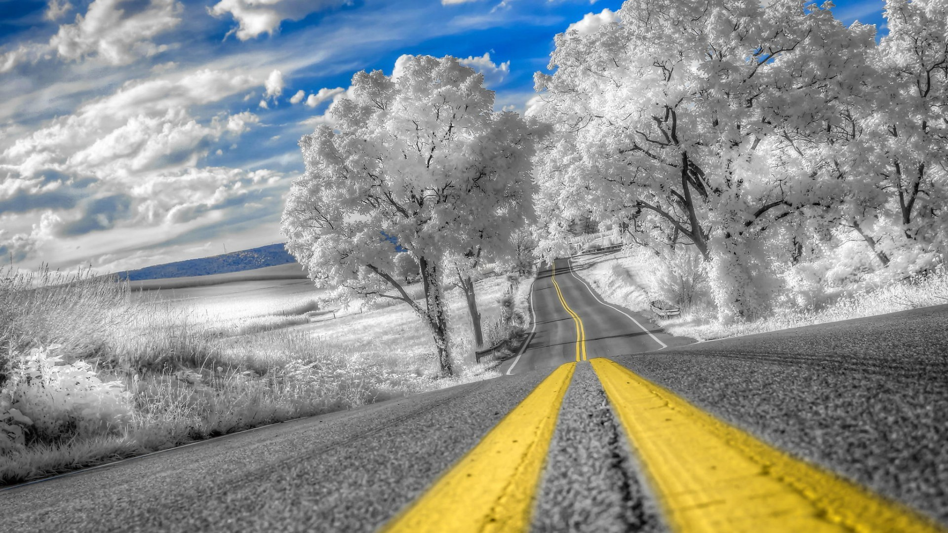 Nechar Wallpaper 3d Very Beautiful Winter Road With Frost Covered Trees