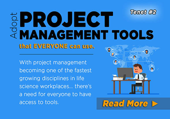 Project Management Archives - ZBglobal - using access for project management
