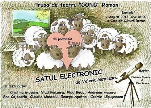 satul electronic