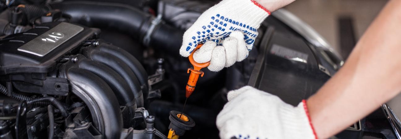Essential Car Maintenance and Service Checklist Zimbrick Fish Hatchery