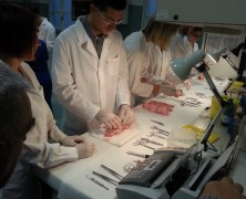 [ENG] Italian Medical Education Days 2015 – The missing piece