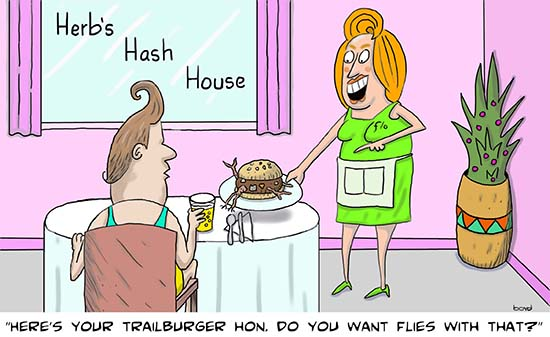 Waitress with trailburger