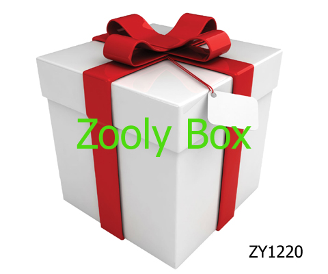 White Paper Box with Lid - Zooly Box - large gift boxes with lids