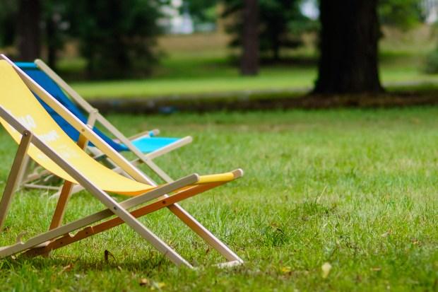 z widokiem na stół | lokalnie na trawie