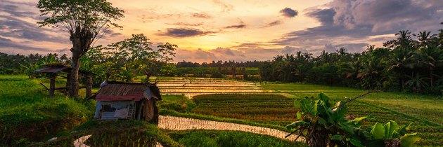 Indonesia v2 color