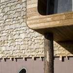 Tree-Trunk Detail