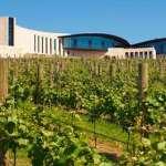Port Phillip Estate Winery