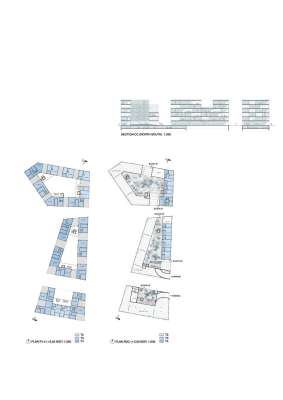 Plans and Section