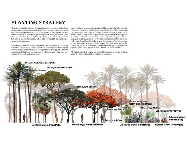PLANT_PALETTE_altjpg (600×464) Queensway Plant Pallette - research paper proposal template