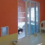 Cat room (Image Courtesy studio a/b architects)