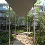 Image Courtesy Osamu Morishita Architect