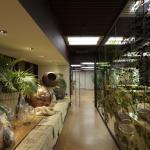 Image courtesy CA/PA Architectes