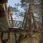 Wild Center, Image Courtesy © Linearscape Architecture, PLLC