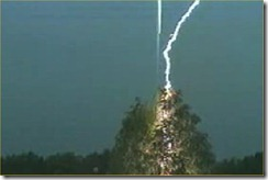 lightning-strike-in-tree