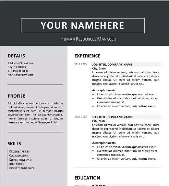 contemporary us resume template free download word file