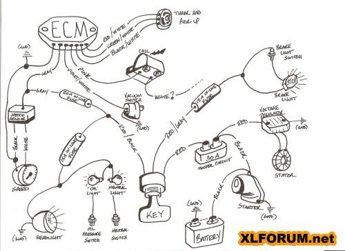 sportster wiring diagram chopcult