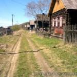 Деревня Быки