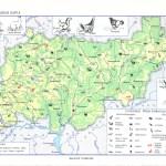 Зоогеографическая карта Костромской области