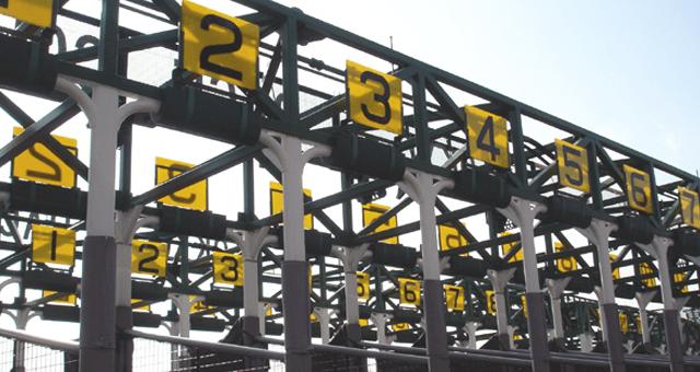 gate_number