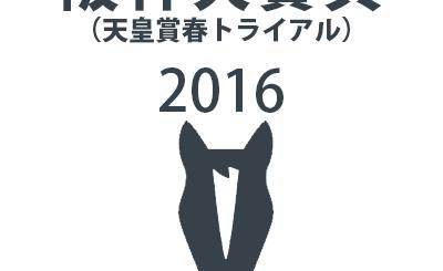 阪神大賞典,2016
