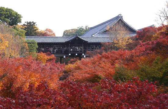 臥雲橋から見た東福寺の紅葉