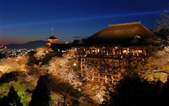 清水寺桜ライトアップ