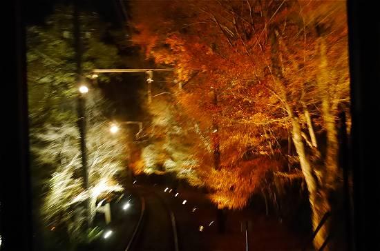 叡山電車もみじのトンネルライトアップ