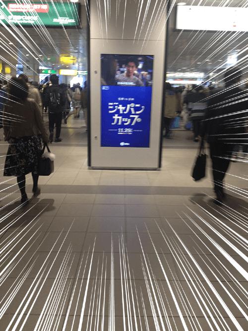 渋谷,ジャパンカップ