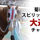 菊花賞2015スピリッツミノル大逃げのチャンス?!