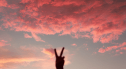 Pink_Sky_Peace___Flickr_-_Photo_Sharing_