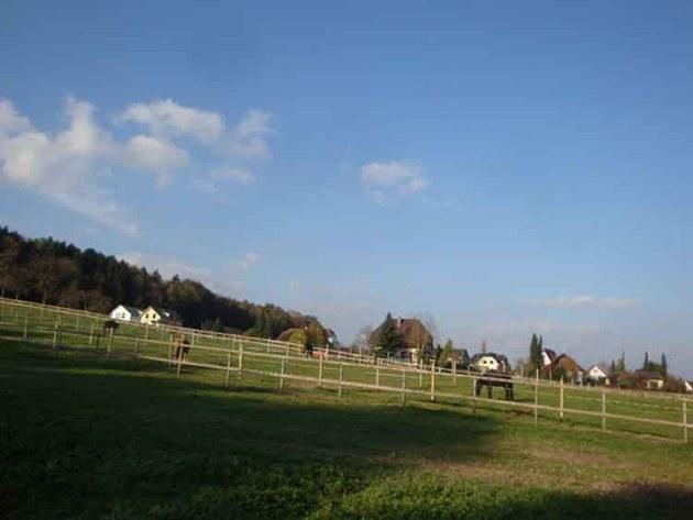 Angrenzende Pferdeweide in Landwirtschaft-Zone