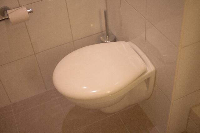 大掃除 トイレ