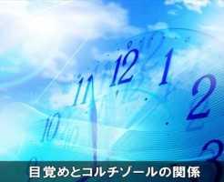 koruchizouruyakume8-1