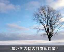 fuyumezametaisaku14-1