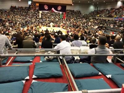 大相撲 春場所 三月場所 大阪場所 大阪府立体育館 チケット 座席表